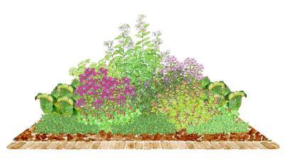 """Kvetinový záhon """"V záhrade"""" - vhodný pre otvorené slnečné miesta"""