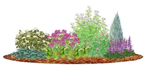 Kvetinový záhon striebristo ružový - vhodný pre otvorené slnečné miesta