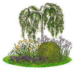 Kvetinový záhon s brezou previsnutou - vhodný pre otvorené slnečné miesta