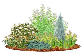 Kvetinový záhon s pajazmínom - vhodný pre otvorené slnečné miesta