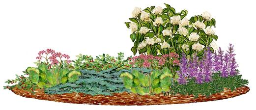 Kvetinový záhon s bielou hortenziou  - vhodný pre otvorené slnečné miesta, rovnako znesie aj plotieň