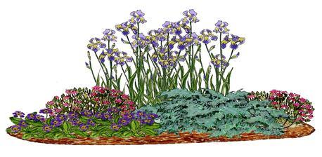 Kvetinový záhon so šedou borievkou - vhodný pre otvorené slnečné miesta
