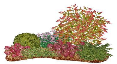 Kvetinový záhon s bršlenom - vhodný pre otvorené slnečné miesta