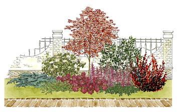 Kvetinový záhon s javorom a hortenziou - vhodný pre otvorené slnečné miesta