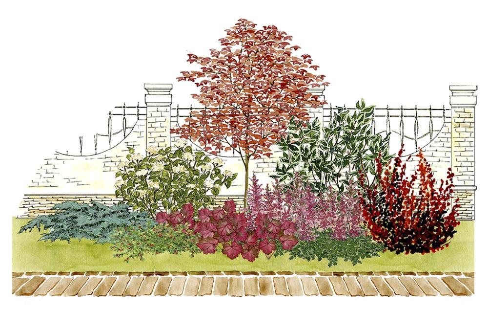 Záhony, výsadby a nejaké tie doplnky - Kvetinový záhon s javorom a hortenziou - vhodný pre otvorené slnečné miesta