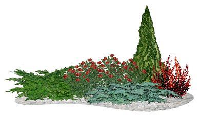 """Kvetinový záhon """"Na ružiach ustlané"""" s ihličnanmi - vhodný pre otvorené slnečné miesta"""