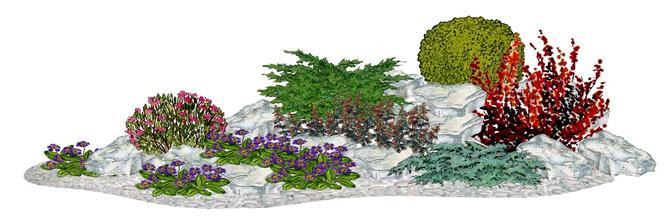 """Kvetinový záhon """"Alpská dráha"""" - vhodný pre otvorené slnečné stanovištia"""