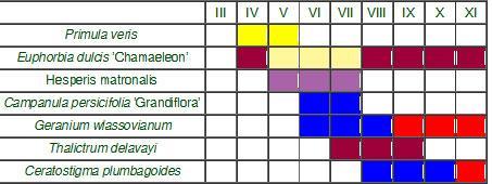 prehľadná tabuľka kvitnutia
