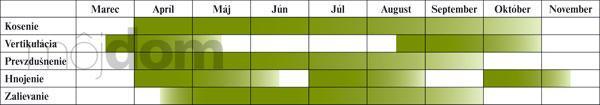 Kalendár starostlivosti o trávnik