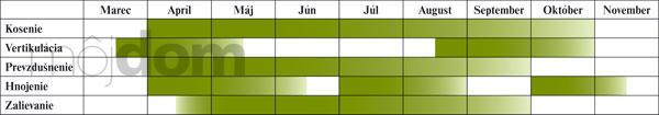 Záhony, výsadby a nejaké tie doplnky - Kalendár starostlivosti o trávnik