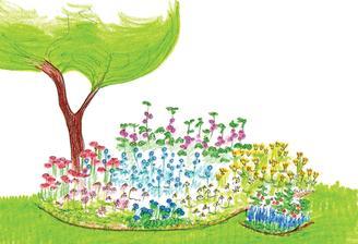 Divoké druhy květin, které upadly v zapomnění