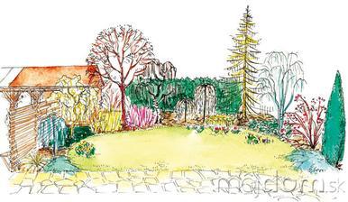 V predjarí budú záhradku zdobiť okrem farby vždyzelených drevín aj ich tvary, pri niektorých možno plody, ak ich počas zimy nevyzobú vtáky.