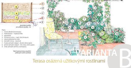 Terasa osázená užitkovými rostlinami
