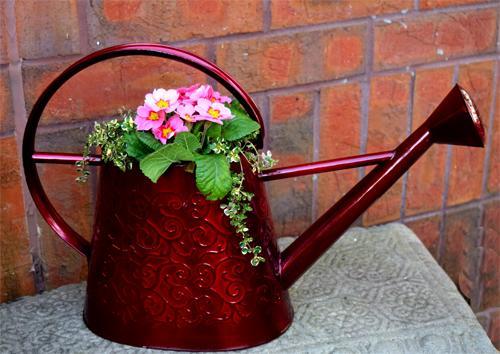 Výsadby do nádob - Watering Can Planter