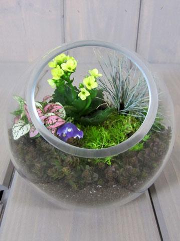 Výsadby do nádob - Small Space Terrarium