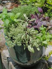 Grilling Container Garden