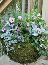May Combination Hanging Basket