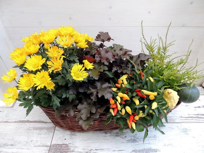 Výsadby do nádob - Prútený kvetináč ( d52 x š27 x v18 cm )
