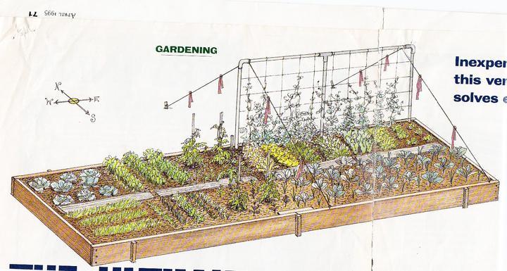 Zeleninové a bylinkové záhony a výsadby - Obrázok č. 25