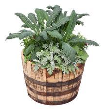 Kale, Flowers & Herbs Container Garden