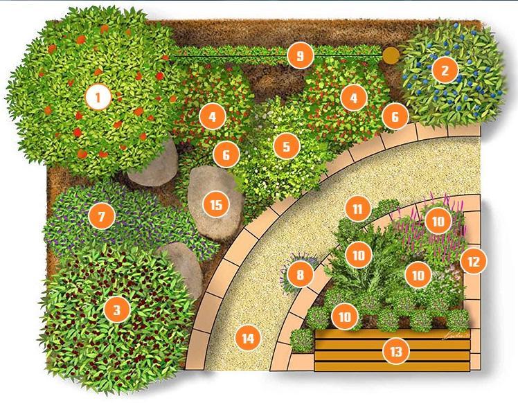 Zeleninové a bylinkové záhony a výsadby - Obrázok č. 81