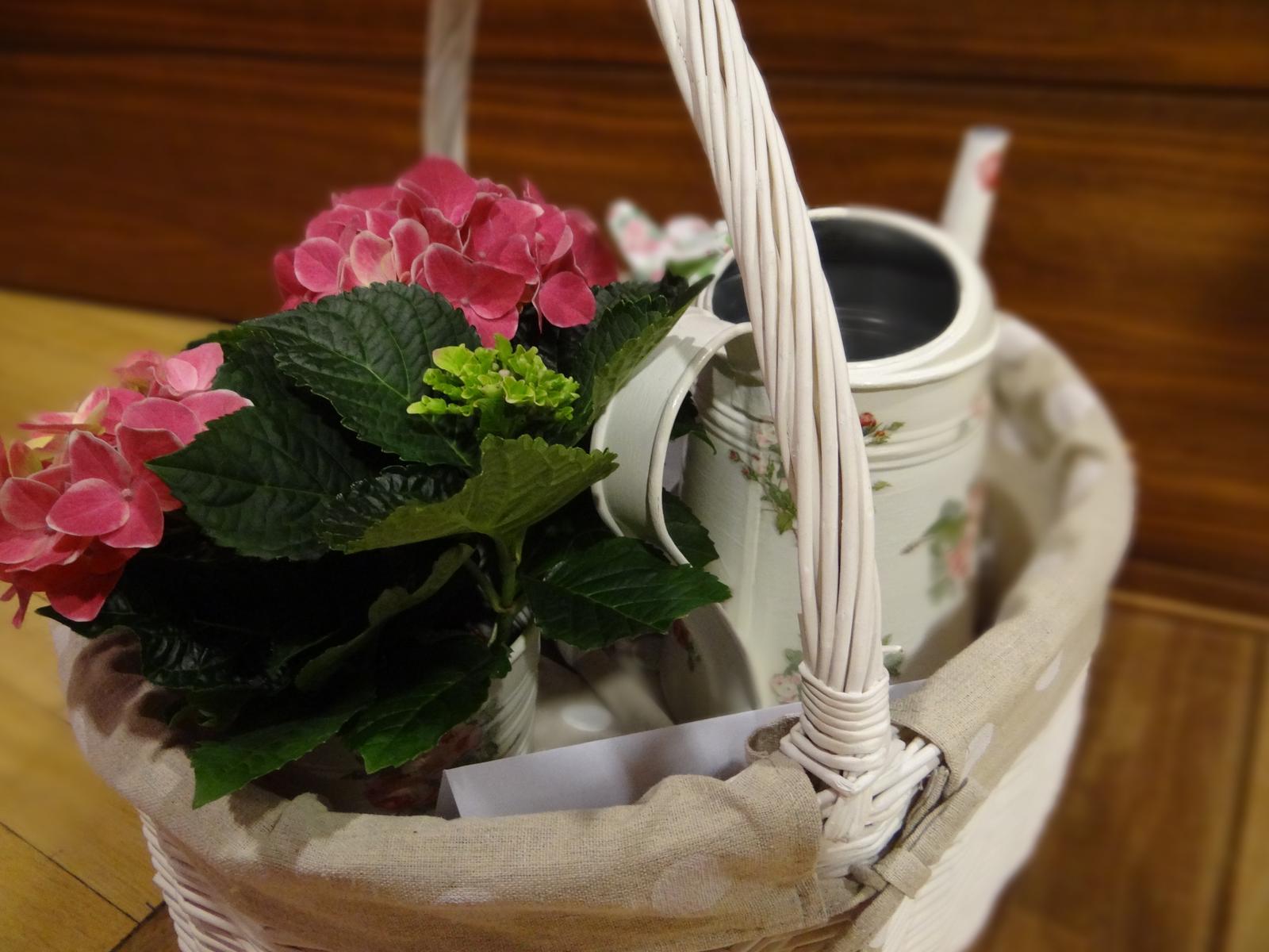 Moje výtvory - A tady už je košíček hotový- je v něm konvička, květináč s hortenzií, kovová lopatka, rukavice a zahradní zástěra (vše s růžičkama) a v neposlední řadě poukaz do zahradnictví :-)