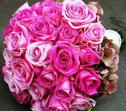 Krásna, ale ja túžim po tulipánoch v takejto farbe