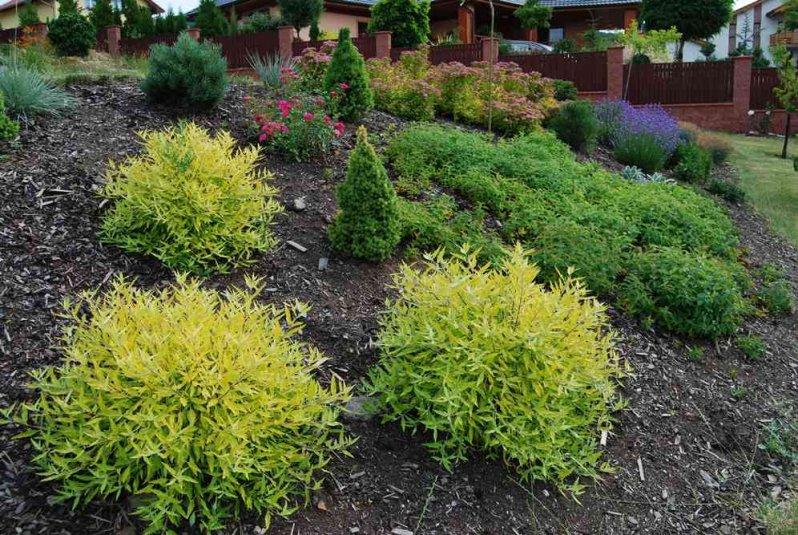 Zahrada-inspirace - Obrázek č. 22