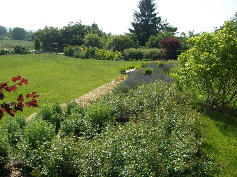 Zahrada-inspirace - opet Kolín pro @ elisek13
