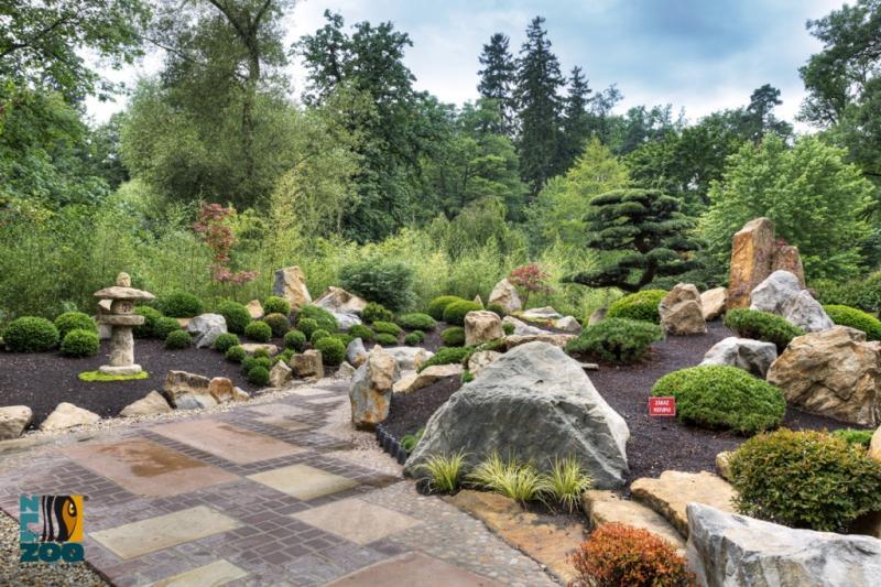 Zahrada-inspirace - Obrázek č. 62