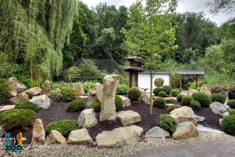 Zahrada-inspirace - Obrázek č. 63