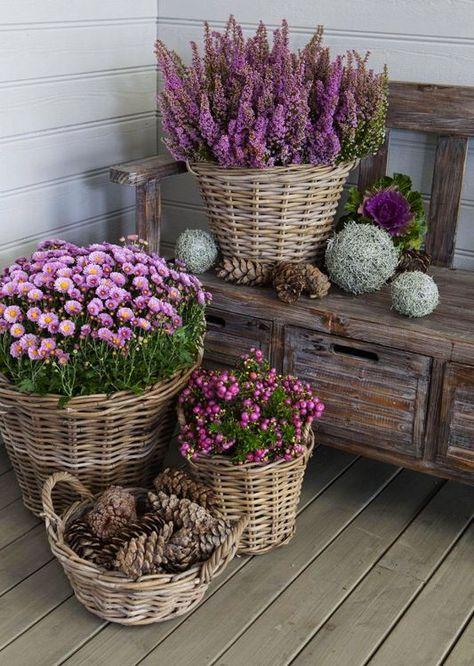 Zahrada-inspirace - Obrázek č. 103
