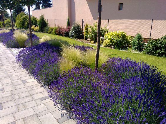 Zahrada-inspirace - Obrázek č. 105