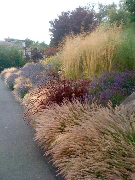 Zahrada-inspirace - Obrázek č. 118