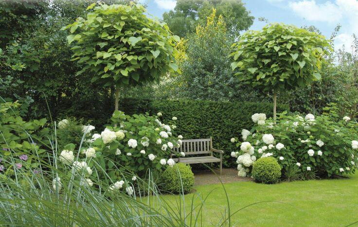 Zahrada-inspirace - Obrázek č. 167