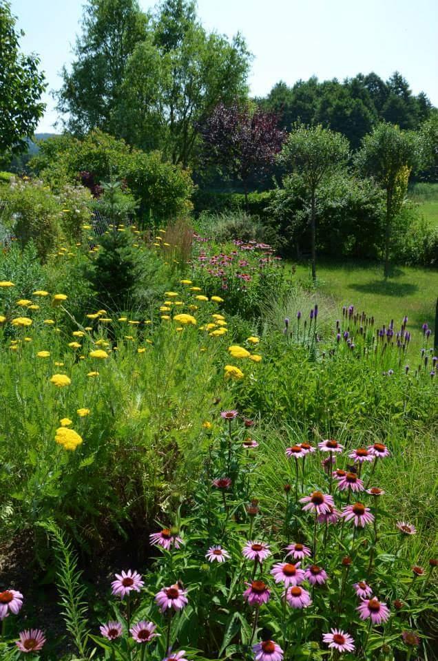 Zahrada-inspirace - Obrázek č. 203
