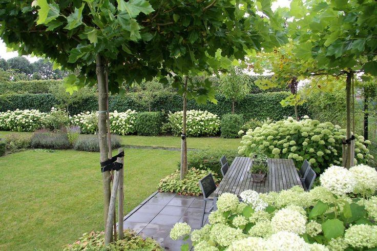 Zahrada-inspirace - Obrázek č. 216