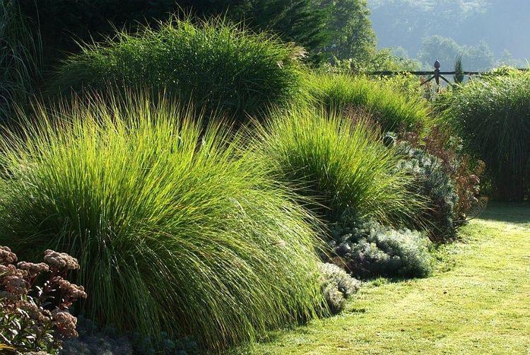 Zahrada-inspirace - Obrázek č. 234