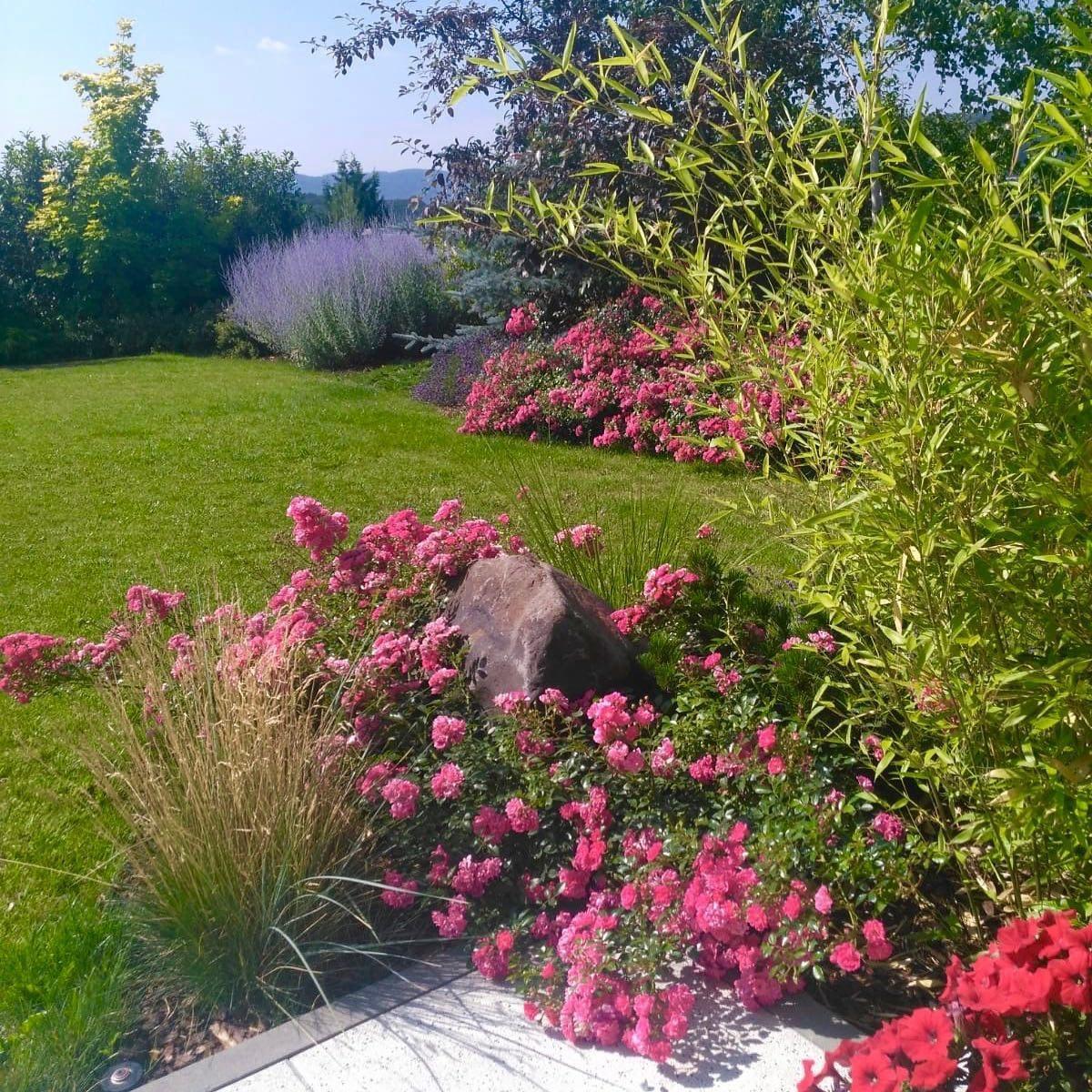 Zahrada-inspirace - Obrázek č. 279