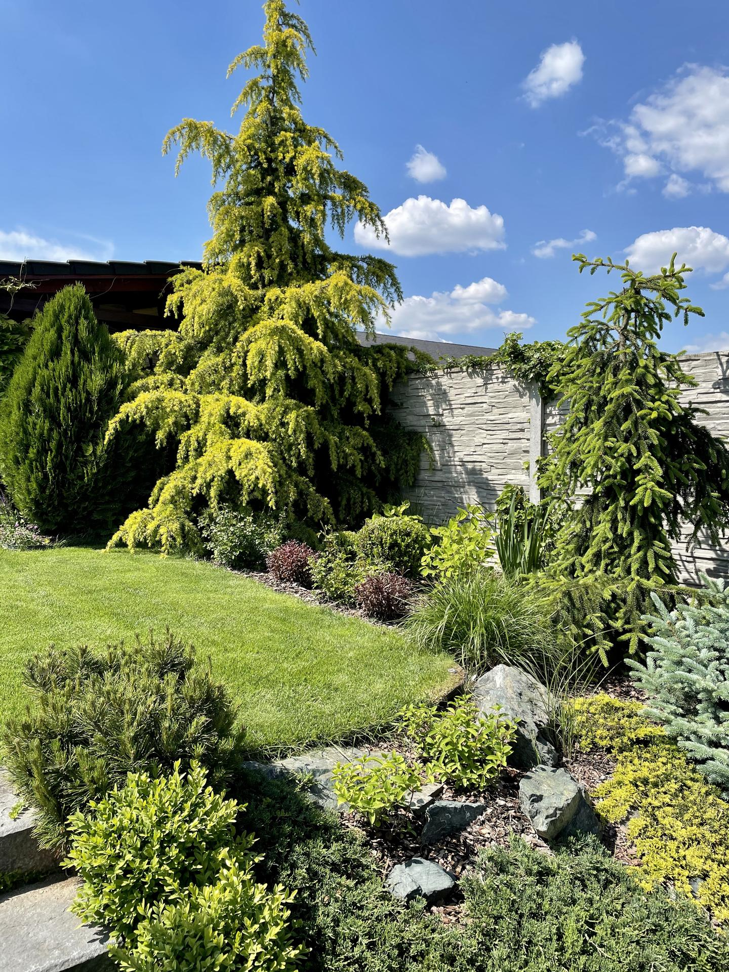 Zahrada 2021 - Obrázek č. 5