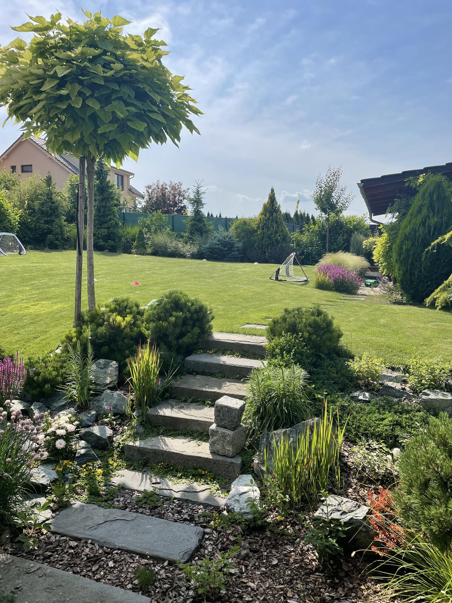 Zahrada 2021 - Obrázek č. 25