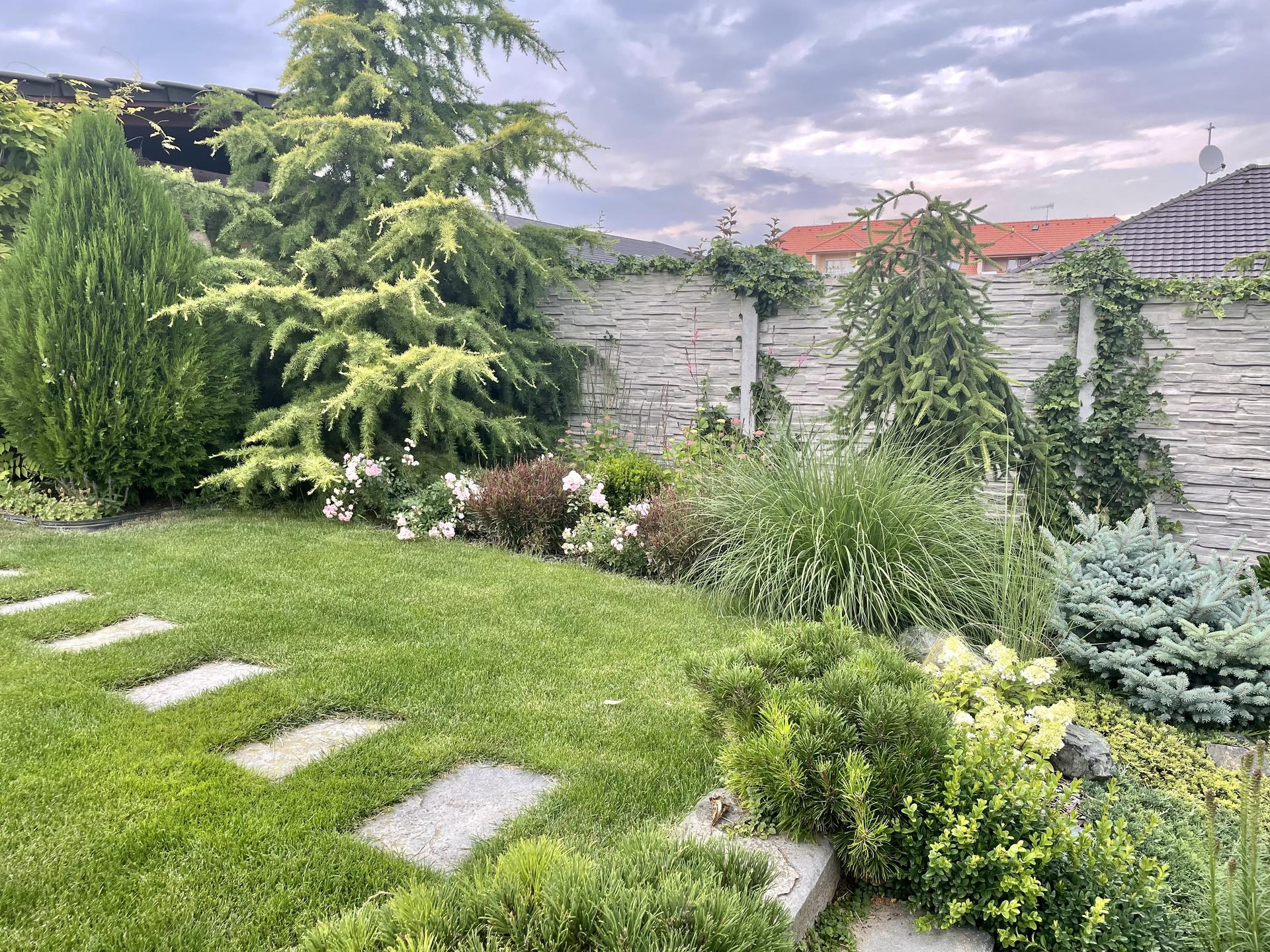 Zahrada 2021 - Obrázek č. 32