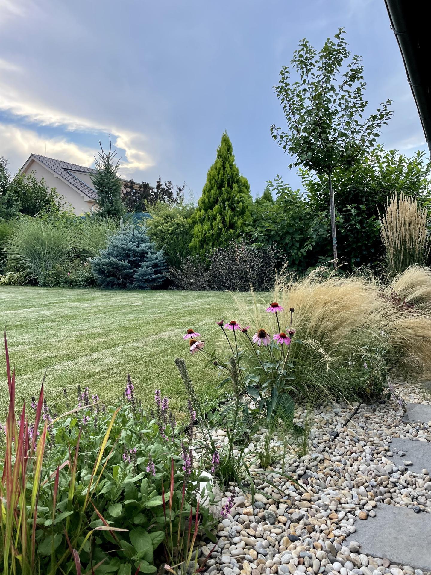 Zahrada 2021 - Obrázek č. 55