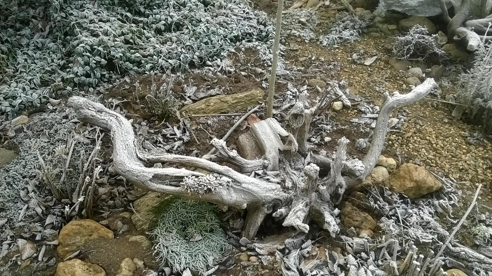 Zima 2017 - Obrázok č. 2