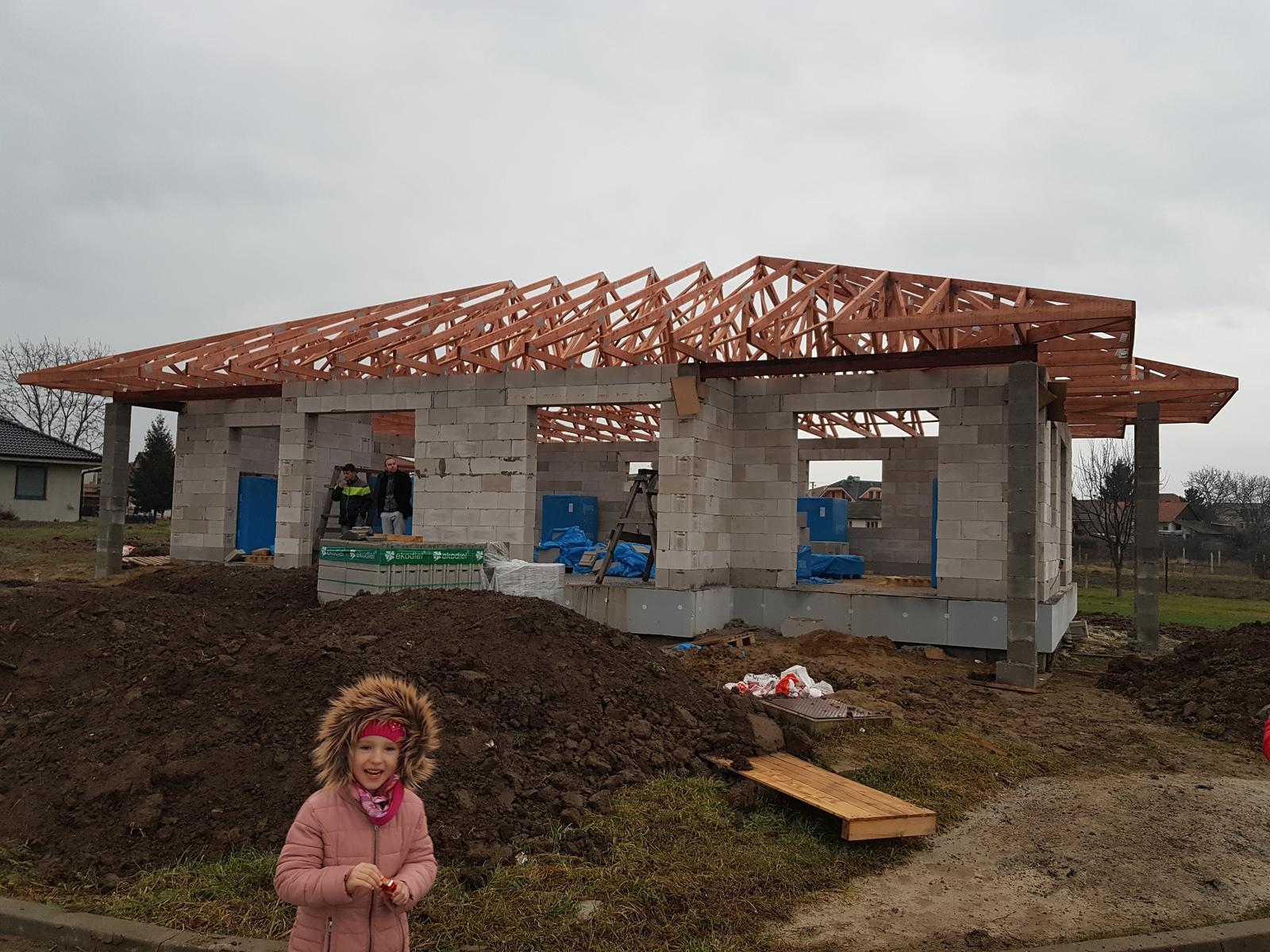 Zaciname stavat nas sen - vaznikovy krov hotovyyy :)
