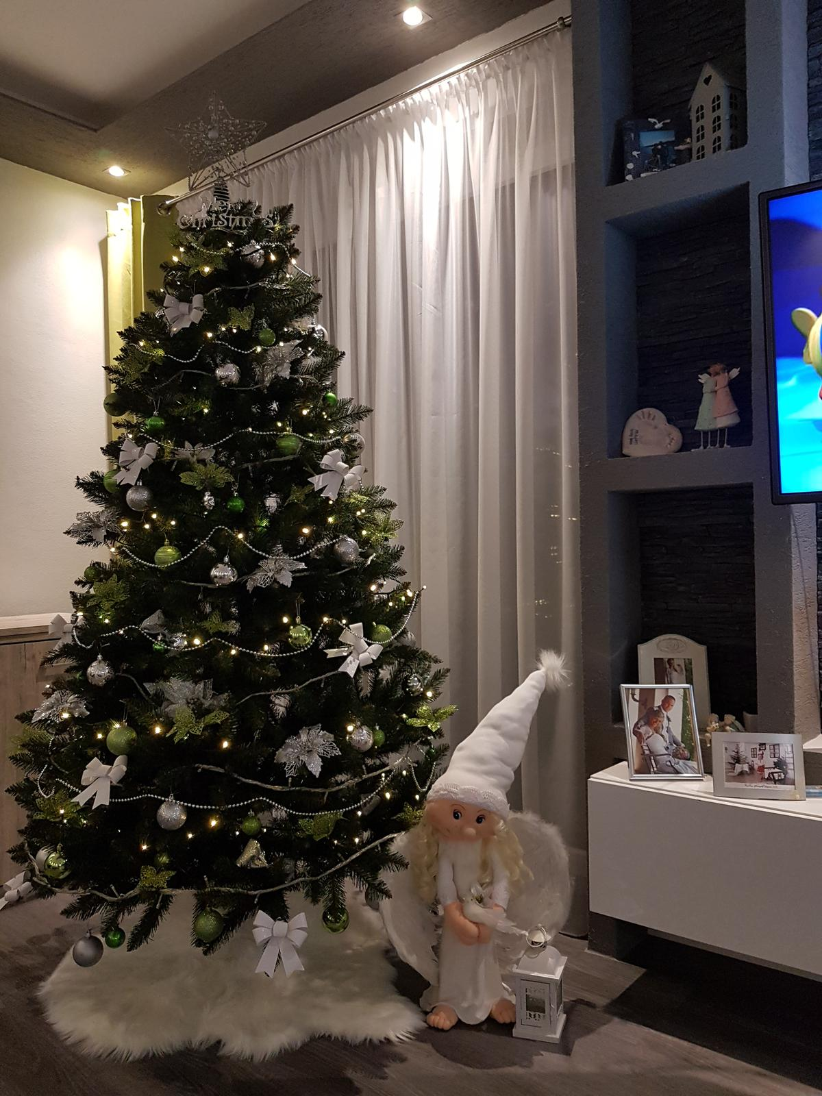 Zaciname stavat nas sen - tento rok v novom domceku mame Vianoce trosku skor, nech si to uzijeme :-)