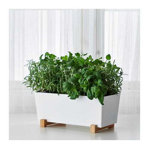 Wishlist - V Ikea mají nové truhlíky. A jsou úžasné!