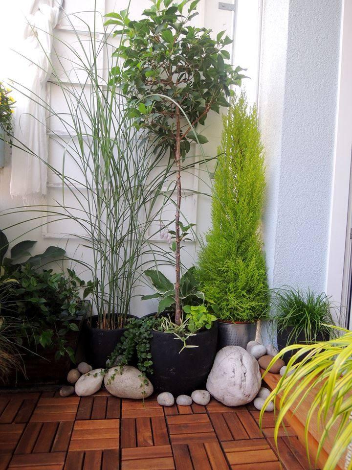 Wishlist - A na levé straně by bylo zelené zátiší + na zemi tato podlahová krytina (foto převzato z FB Ikea)