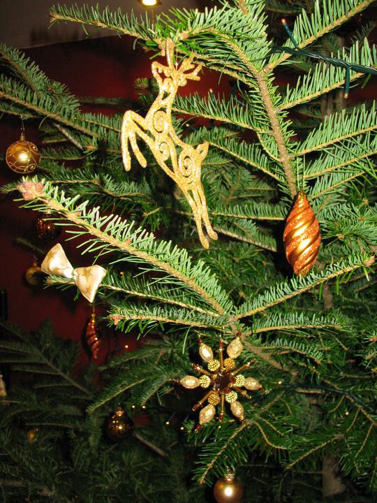 Bývame a dokončievame - tento rok nie je na stromceku ani jedna stara ozdoba... vsetko nove nakoniec  :)  kvoli farebnosti - skoricovo zlata...