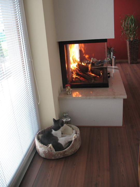 Bývame a dokončievame - 16.máj  2012 - nevydržala som a zakurila uprostred mája, brr, to bola kosa  v dome ako sa ochladilo..... aj Bery sa prisiel vyhriať :)